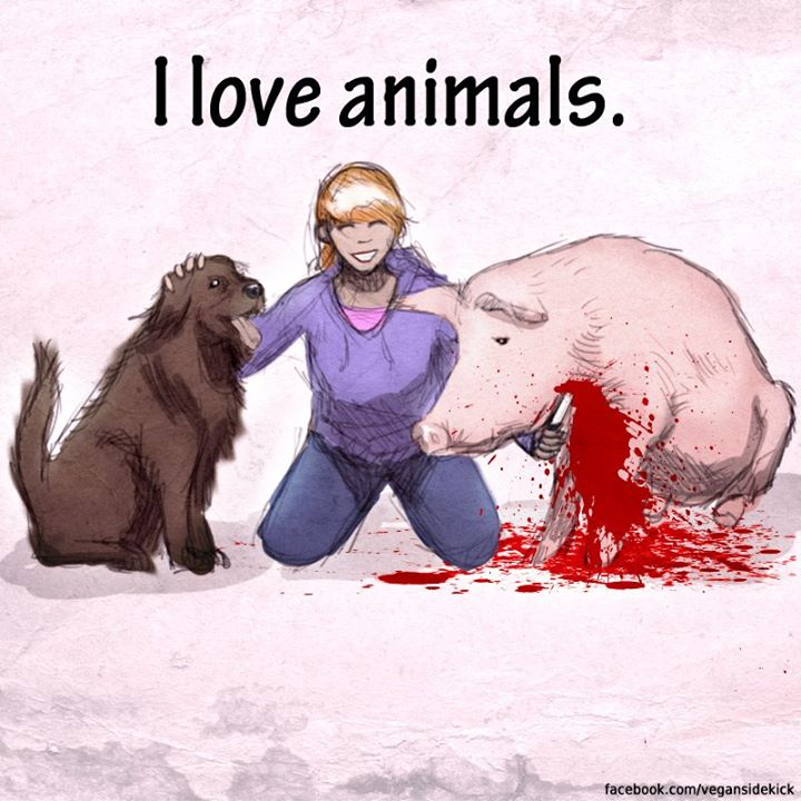 We Love 'em to Death: The hypocrisy of 'animal lovers' who eat meat