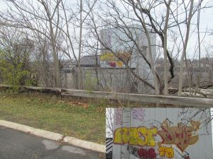 Ugly graffiti at the top of the Niagara Gorge on the Moses Parkway south of Findlay Drive. How very scenic.