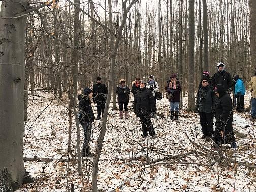 Learn to ID treeswhile hiking the Niagara Escarpment