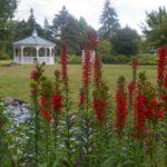The Revival of North Tonawanda's Botanical Gardens